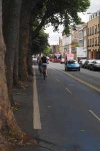 CS3 Tree-lined cycling