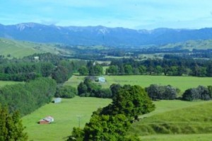 Wakarara Valley inder the Ruahine Ranges