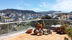 View of Wellington from the balcony where I stayed