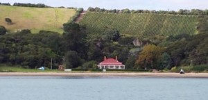 O'Brian House on Te Whau peninsular famed for vineyards & Olive Oil