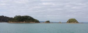 The Almost Islands at the end of Te Whau