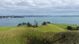 Seductive curves looking at Auckland