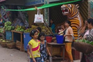 Fruit stall in constant danger from marauding monkeys